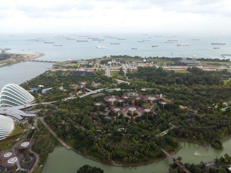 Сингапур. Город будущего